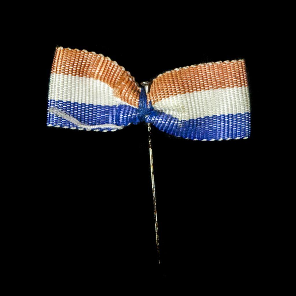 Speldje Nederlandse vlag